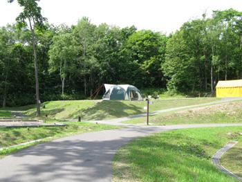 タンジェントハイトゲージで木の高さを測ったキャンプ場