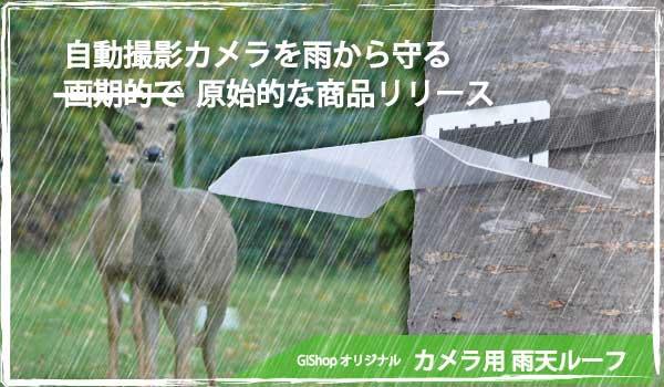 rain_loof_top